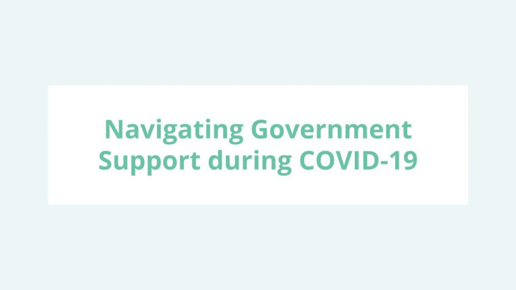 DMZ Webinar - Navigating government support